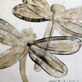 Deux libellules